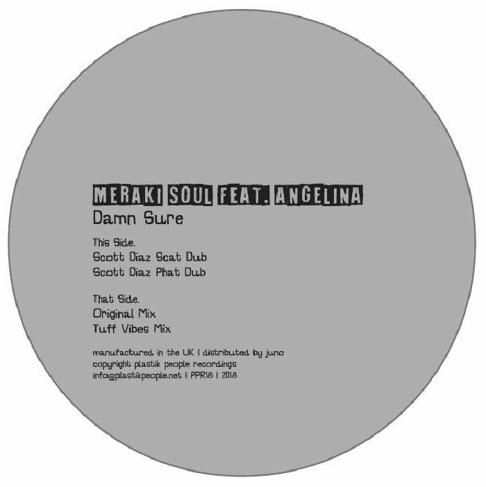 MERAKI SOUL feat ANGELINA (feat Scott Diaz & Tuff Vibes mixes) - Damn Sure