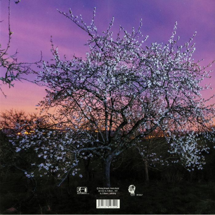 ORCHARD - Serendipity