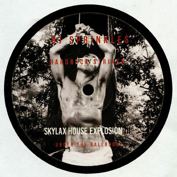 DJ SPRINKLES/HARDROCK STRIKER aka SKYLAX HOUSE EXPLOSION/PHILLIP LAUER/OCTO OCTA/VIOLENCE FM & THE UNDERGROUND SOULSAVERS - Skylax House Explosion III: Under The Ballroom